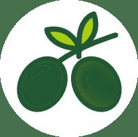 aceitunaverde